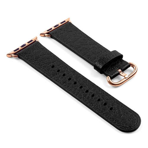 iWatch-belt-repair